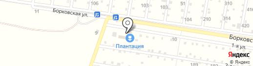 Плантация на карте Тольятти