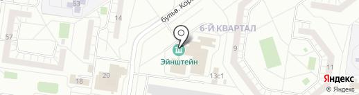 Медведь на карте Тольятти