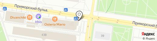 Магазин пряжи, вышивки, фурнитуры на карте Тольятти