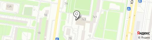 Зебра на карте Тольятти
