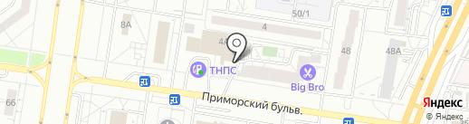 Верный друг на карте Тольятти