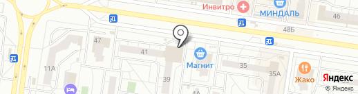 Три Кота на карте Тольятти