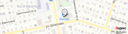 Каштан на карте Тольятти