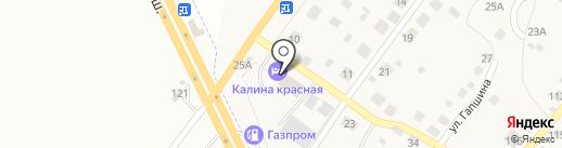 Калина красная на карте Васильевки