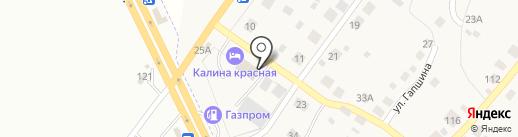 ИЗБА на карте Васильевки
