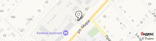 Автодрайв на карте Васильевки