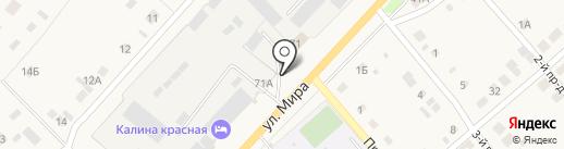 Все для дома и сада на карте Васильевки