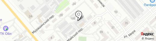 Аллигатор на карте Кирова