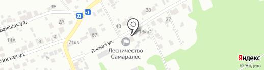 Новокуйбышевское лесничество на карте Новокуйбышевска