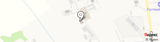 Мираторг на карте Новосемейкино