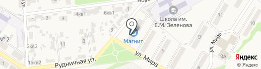Пеликан на карте Новосемейкино
