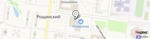 Магазин игрушек на карте Рощинского