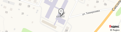 Шиномонтажная мастерская на карте Выльгорта