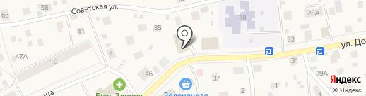 Купина на карте Выльгорта