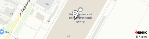Яна на карте Нижнекамска