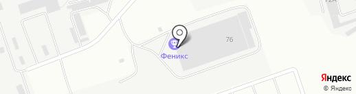 Феникс на карте Альметьевска