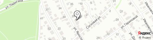 Амур на карте Ижевска