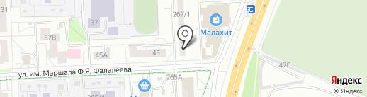 Клюква на карте Ижевска