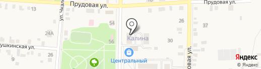Калина на карте Завьялово