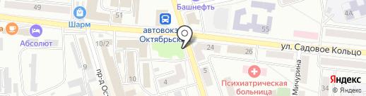 Магнолия на карте Октябрьского