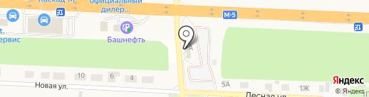 Шиномонтажная мастерская на карте Пригородного
