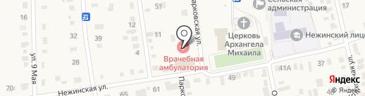Врачебная амбулатория на карте Нежинки