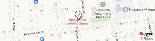 Магнит на карте Нежинки