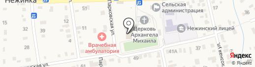 Нежинка на карте Нежинки