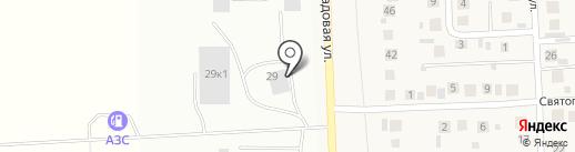 Белый клён на карте Михайловки