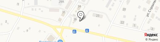 Сеть аптек на карте Петровки