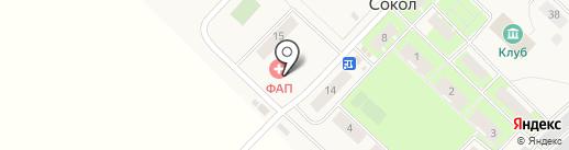 Фельдшерско-акушерский пункт пос. Сокол на карте Сокола