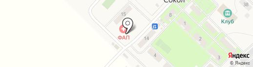 Фельдшерско-акушерский пункт на карте Сокола
