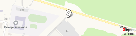 Пермский сад на карте Ванюков