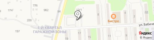 Шиномонтажная мастерская на карте Звездного