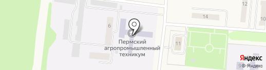 Пермский агропромышленный техникум на карте Бершетя