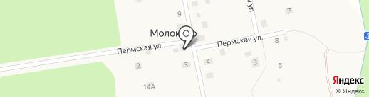 Живой источник на карте Молоково