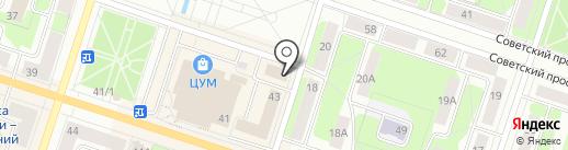 Мармеладный кот на карте Березников