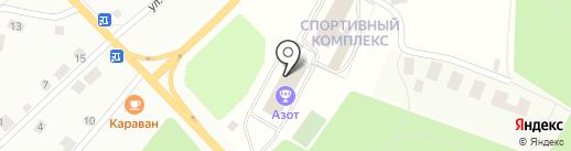 Ника на карте Березников