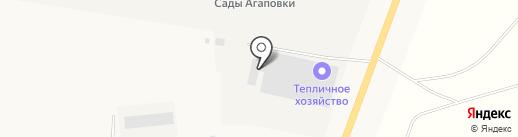 Лимонарий на карте Наровчатки
