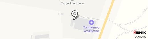 Магнитогорский лимонарий на карте Наровчатки
