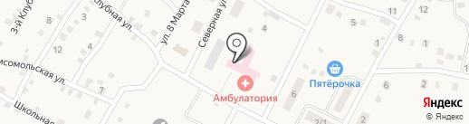 Приморская врачебная амбулатория на карте Приморского