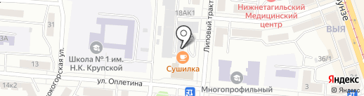 TVEND на карте Нижнего Тагила