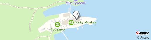 Funky Monkey на карте Миасса