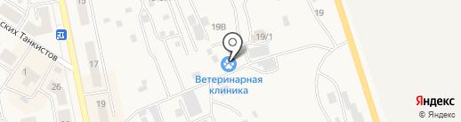Частная ветеринарная клиника на карте Дегтярска