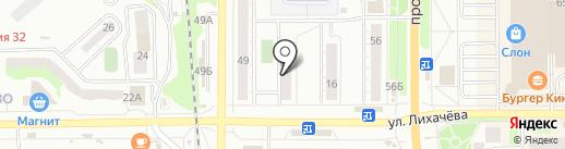 Пингвин на карте Миасса