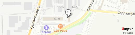 Замороженная птица на карте Миасса