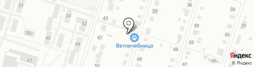 Дзержинская участковая ветеринарная лечебница на карте Нижнего Тагила
