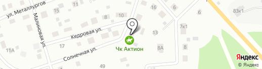 АКТИОН на карте Берёзовского