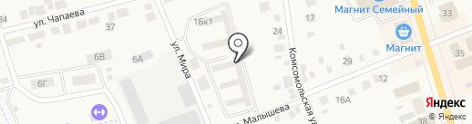 Стрижи на карте Арамиля