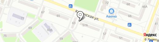 Кот Бегемот на карте Каменска-Уральского